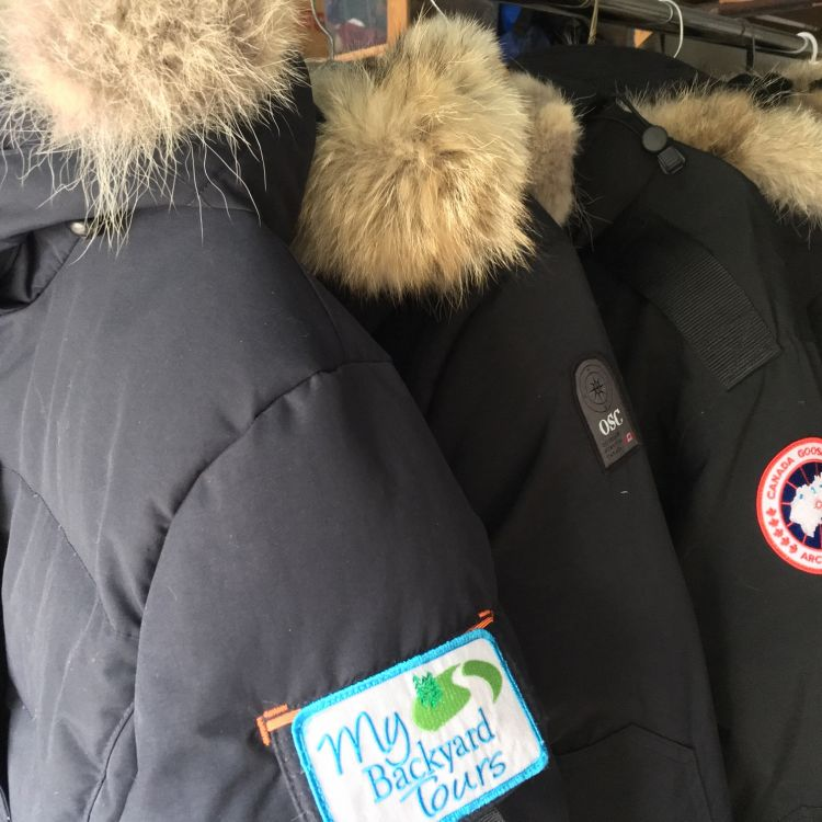 Canada Goose and Outdoor Survival Canada Parks